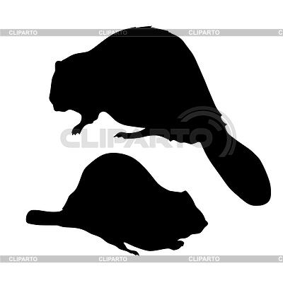 Beaver | Stock Vector Graphics |ID 3245712