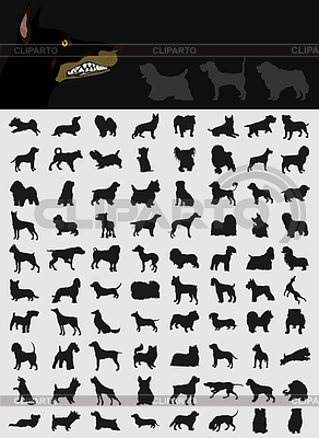 Collection of dogs | Stock Vector Graphics |ID 3257508