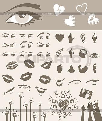 Części ciała | Klipart wektorowy |ID 3258917