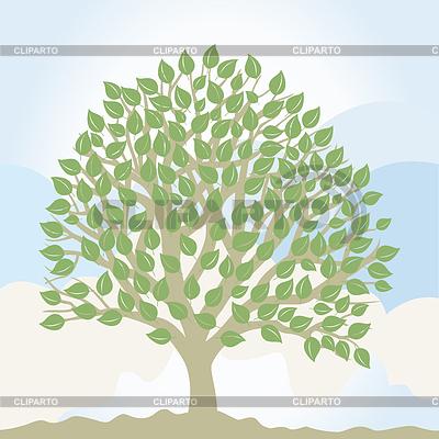 나무   벡터 클립 아트  ID 3262589