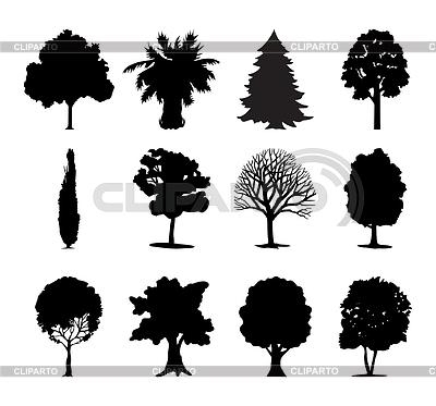 Drzewa ikony | Klipart wektorowy |ID 3262725
