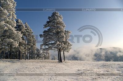 Winter scene | High resolution stock photo |ID 3302666