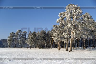 Winter landscape | High resolution stock photo |ID 3302667
