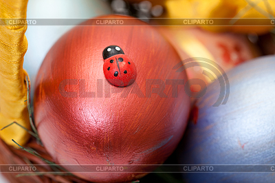 Ladybug on painted easter eggs in basket | High resolution stock photo |ID 3299328