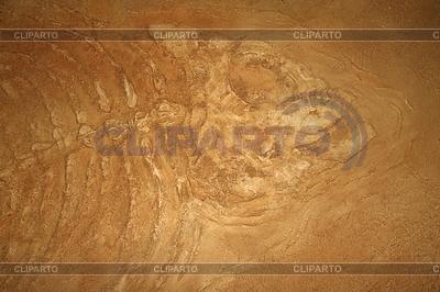 Riesen Fischfossilien | Foto mit hoher Auflösung |ID 3315617