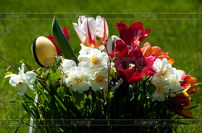 Easter Flower Bouquet | High resolution stock photo |ID 3379748